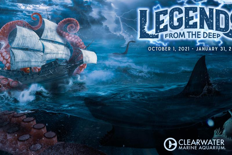 Legends from the Deep at Clearwater Marine Aquarium