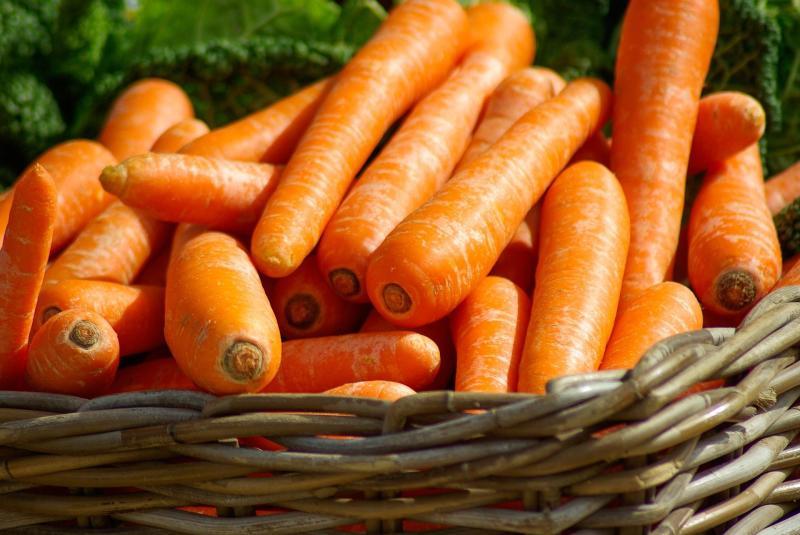 Fresh Market at Wiregrass