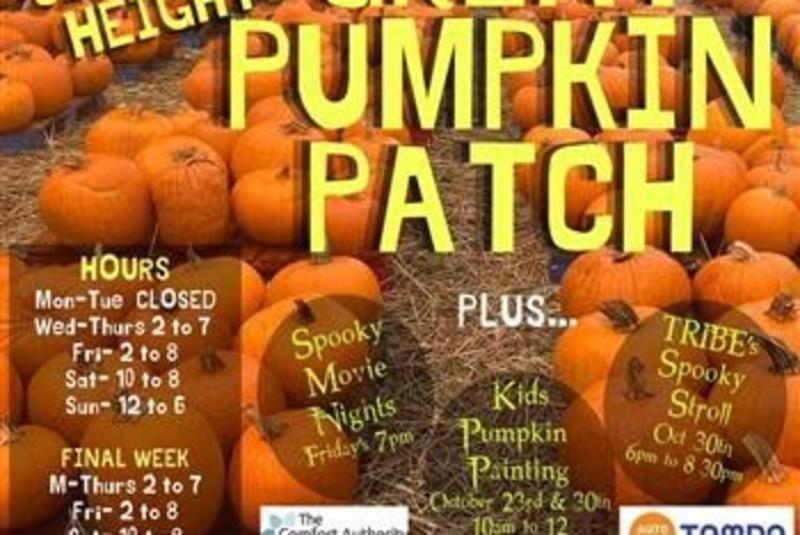 The Seminole Heights Great Pumpkin Patch