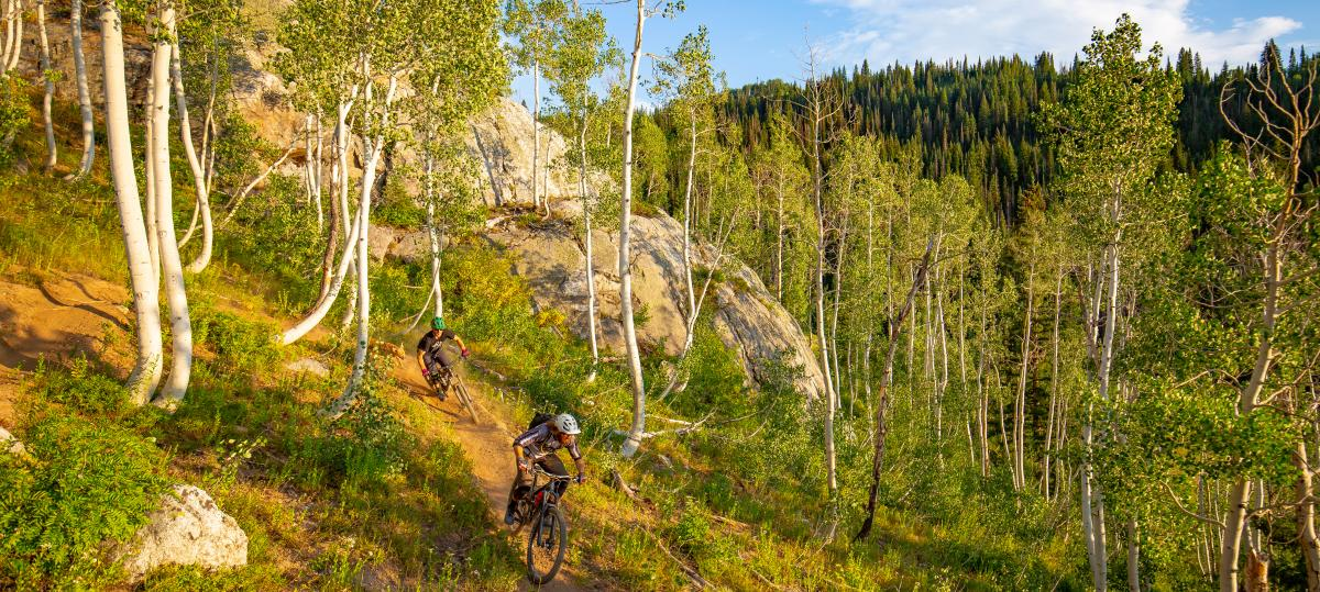 Top Ten Summer Activities in Steamboat Springs: Biking