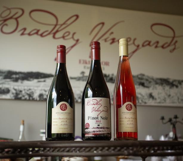Selection of bottled Pinot Noir Wines