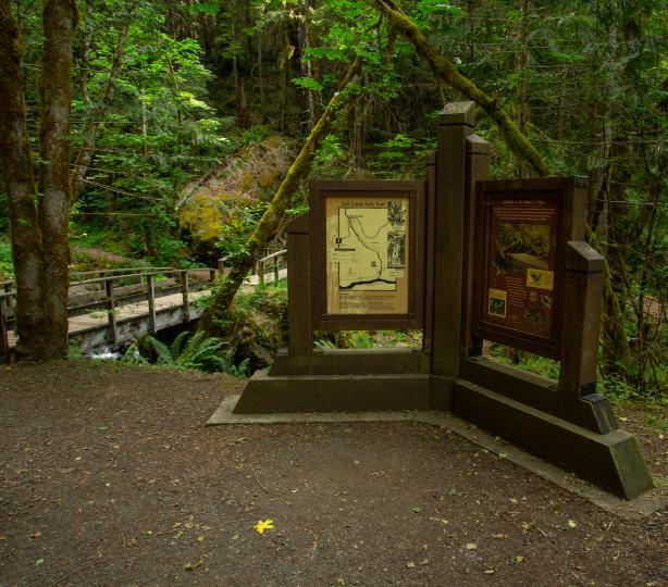Fall Creek Falls Trailhead