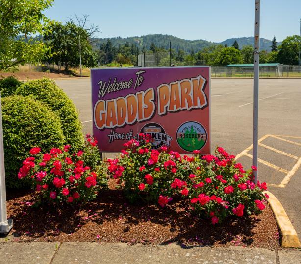 Gaddis Park