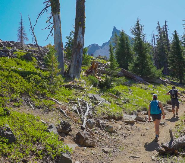 Mt. Thielsen Trail