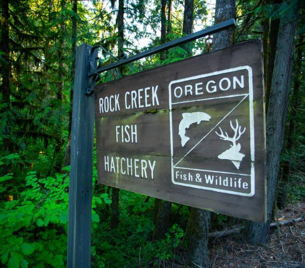 Rock Creek Hatchery