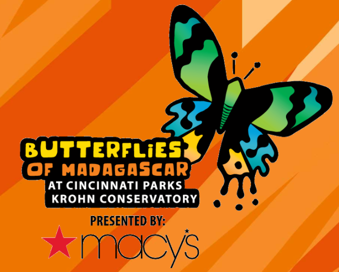 An orange sign with Butterflies of Madagascar written on it and a drawing of a blue and orange butterfly