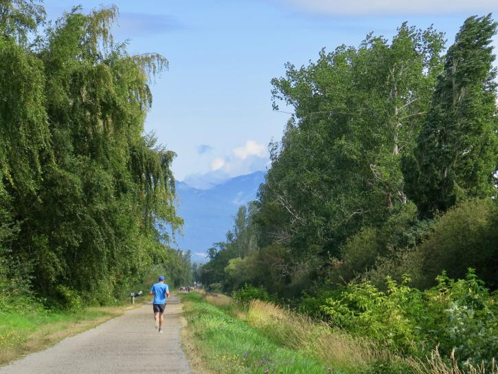 A jogger on the West Dyke Trail