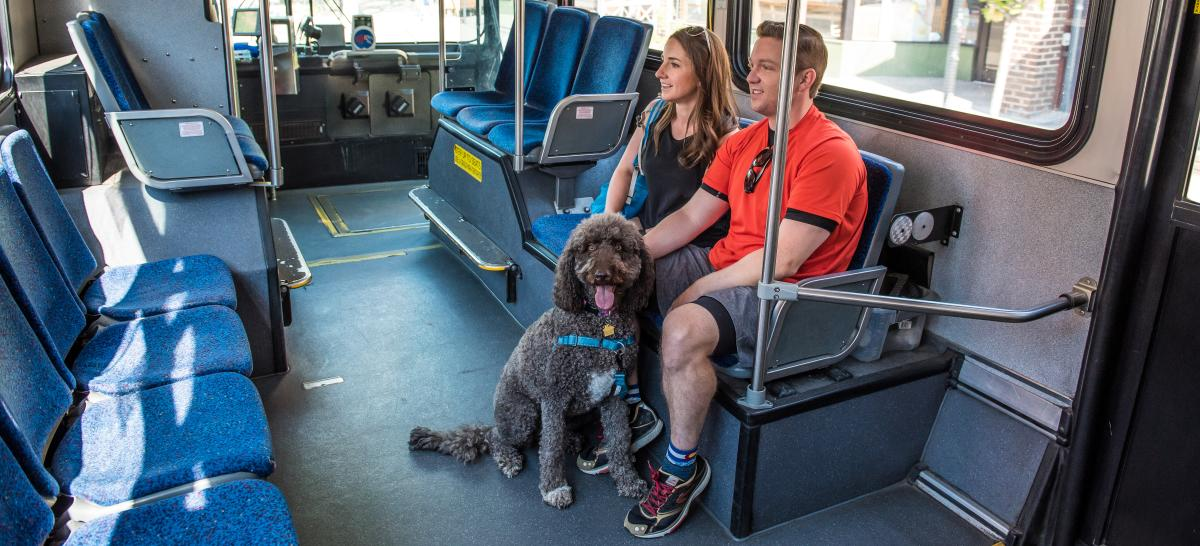 Man and woman with their dog riding the Park to Park Shuttle