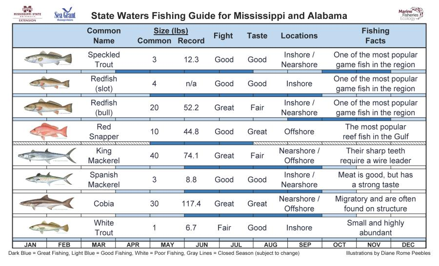 State Waters Fishing Guide for Mississippi and Alabama