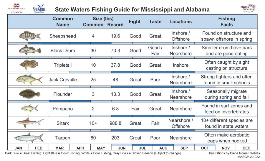 Sea Grant Fish Guide Fact Sheet