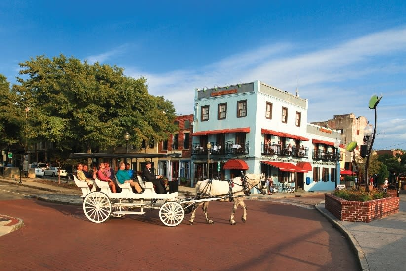Horse carriage ride in historic downtown Wilmington