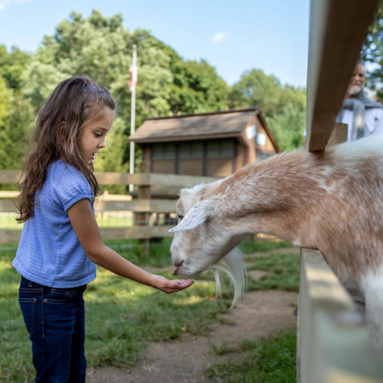 agritourism-indian-echo-caverns-petting-zoo-hummelstown