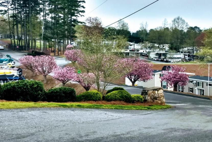 Sites in Spring