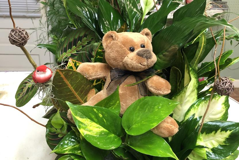 Teddy Bear Arrangement