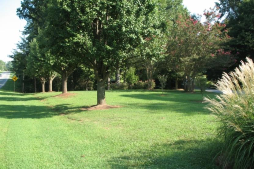 Little Brook Park