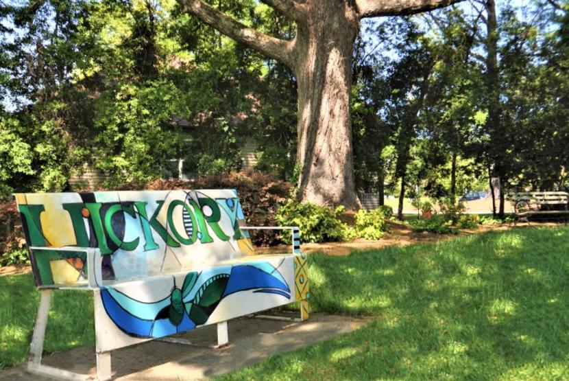 Viewmont Park