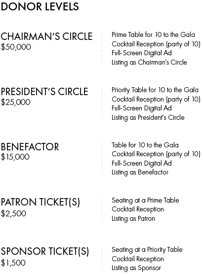 Visions & Voices Gala 2019 Donor Levels