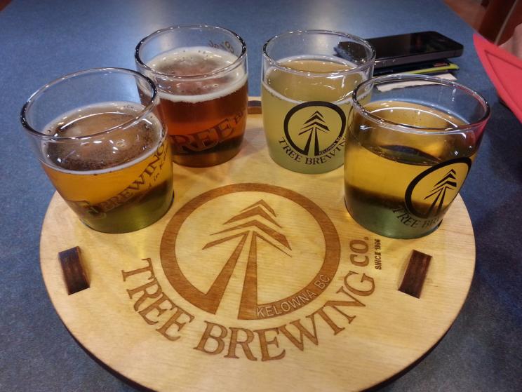 Flight of Beer | Tree Brewing