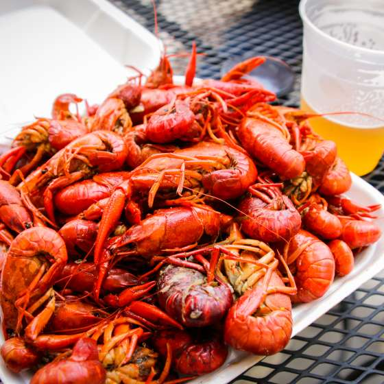 NOLA Crawfish Festival