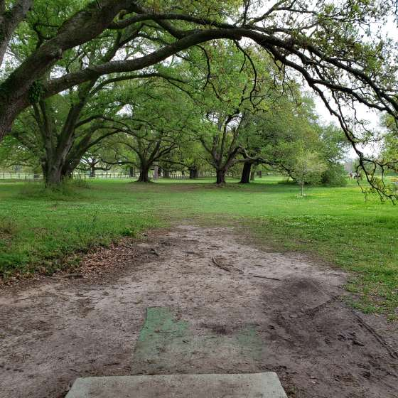 City Park Disc Golf