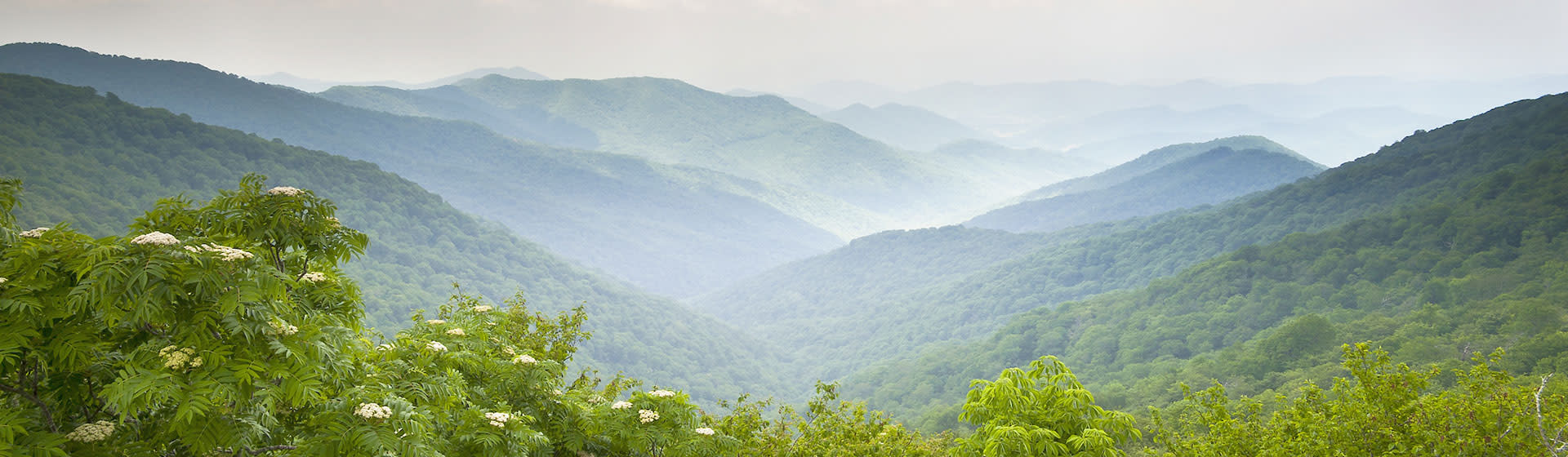 Asheville's Craggy Mountains Overlook in Spring