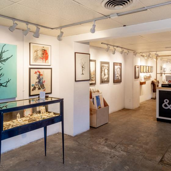 Studio & Gallery