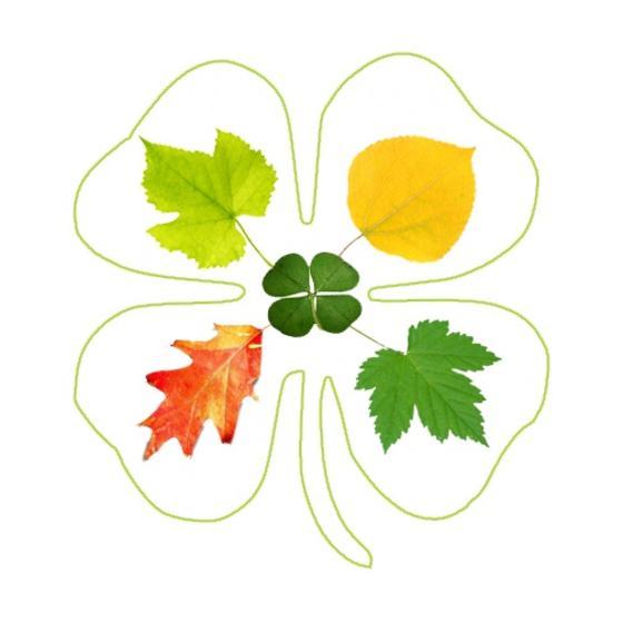 1_-_Four_Leaves_Logo.jpg