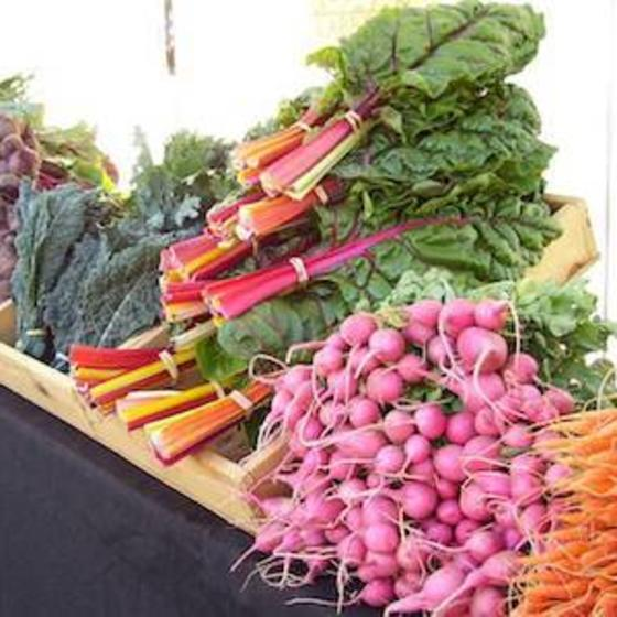 4-durango-farmers-market-durango-colorado-things-to-do
