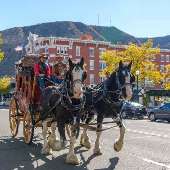 D&K Wagon Rides