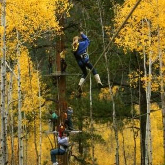Soaring in autumn Aspens