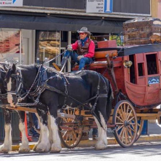 D & K Wagon Rides