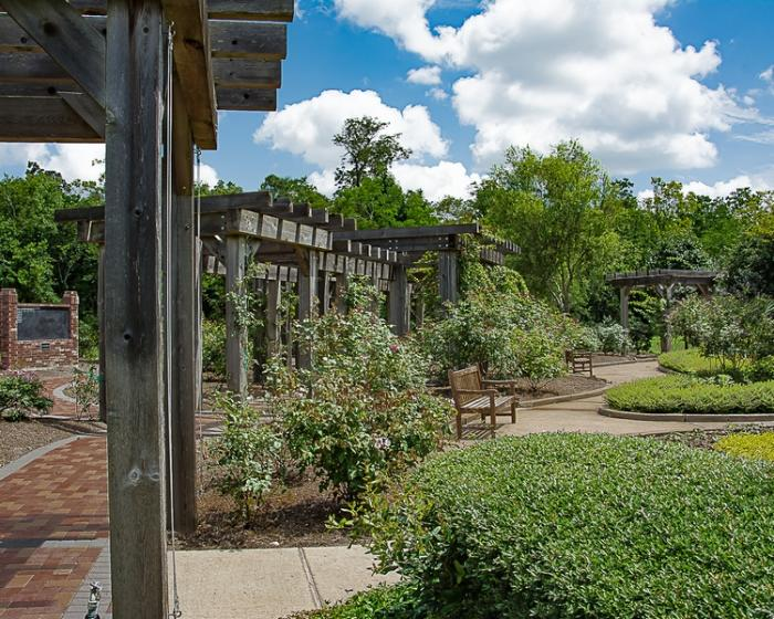 Gardens at Tyrrell Park