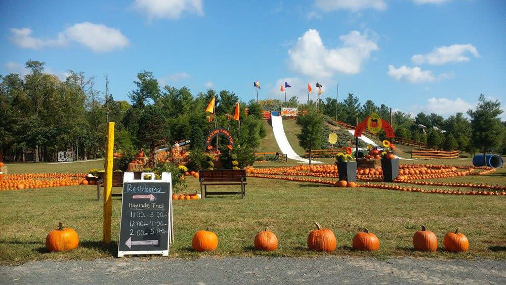 Ticonderoga Farms Fall Festival