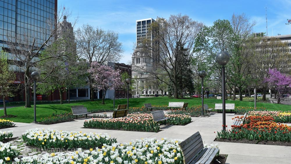 Freimann Square Spring Skyline Jigsaw Puzzle Photo