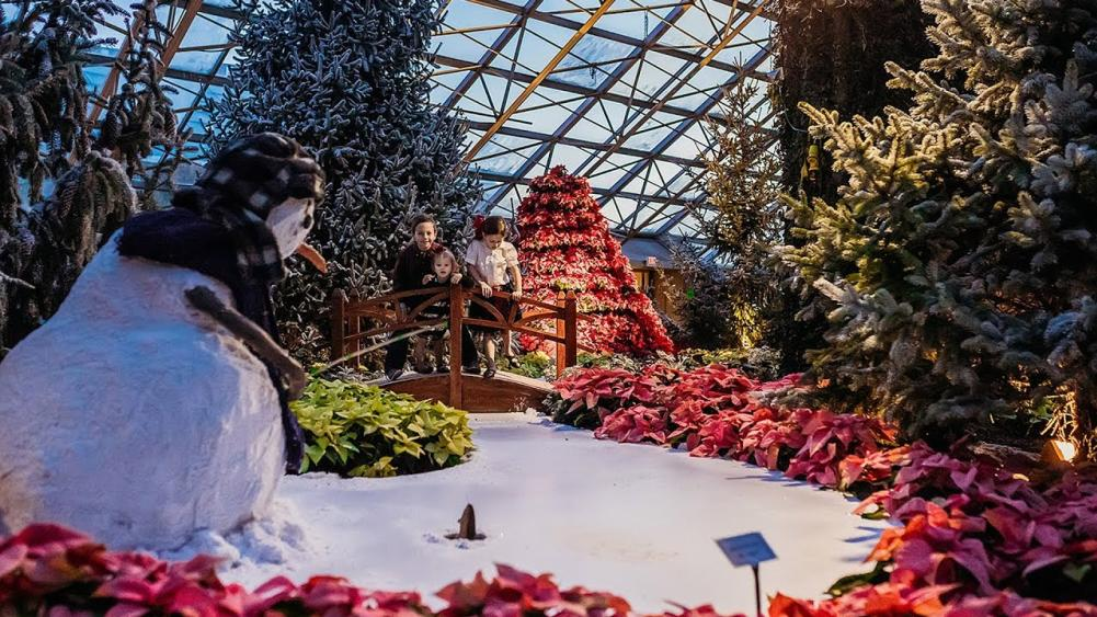 Christmas at the Botanical Conservatory