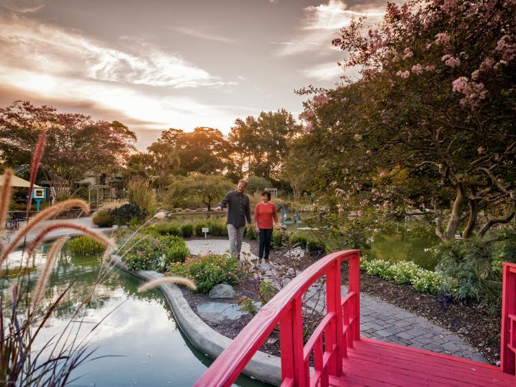 4x3 Wilmington Arboretum Fall Ad Shoot