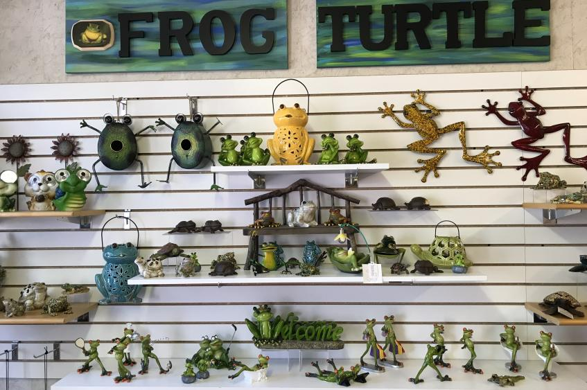 Frog and Turtle Section
