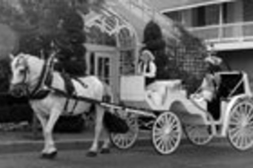 Centennial Carriage