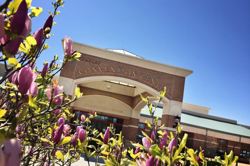 Front Entrance in Spring
