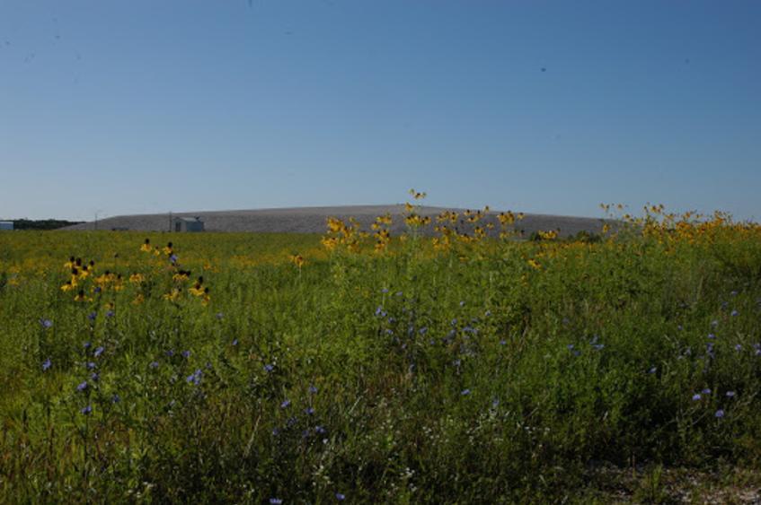 Howell Prairie
