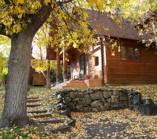 Cabin 9 Fall