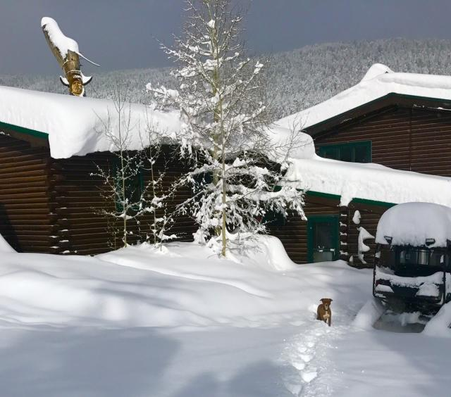 Snowfall on the Cabin