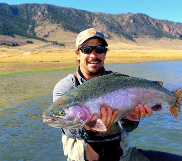 Kirk's Big Rainbow Fish