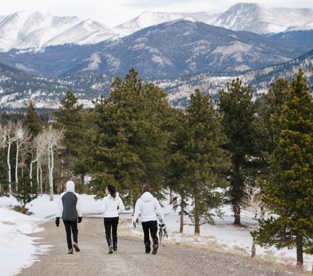 Snowshoe Trio