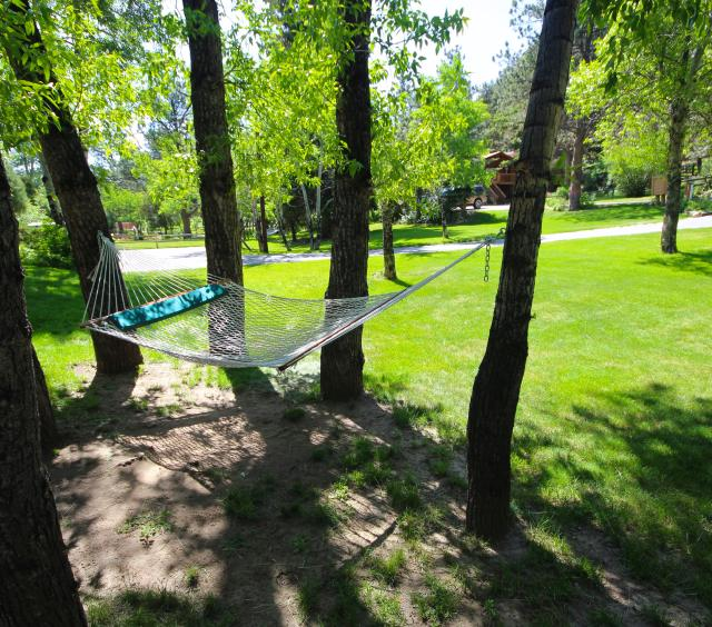 Hammock under the trees