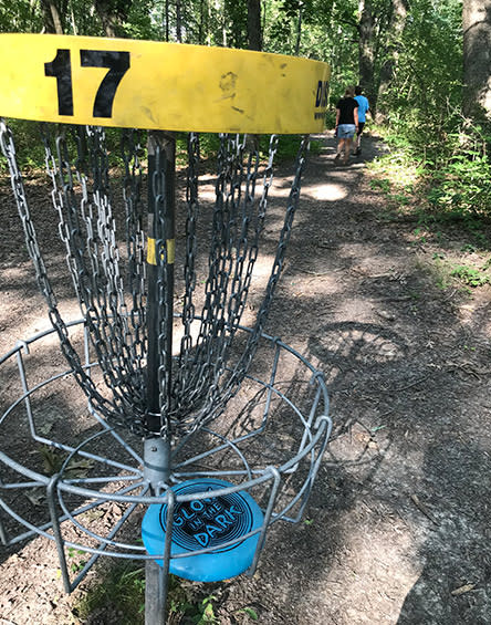 Lemon Lake County Park disc golf - disc catcher