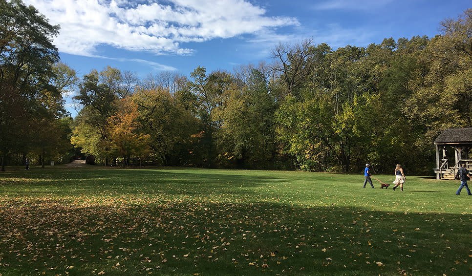 Deep River County Park fall