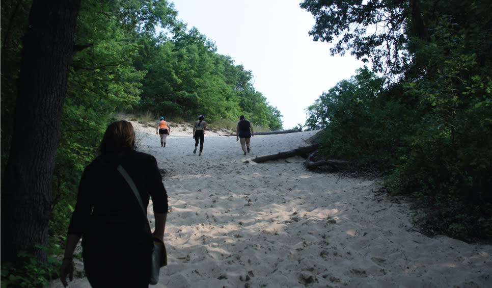 Indiana Dunes State Park hike