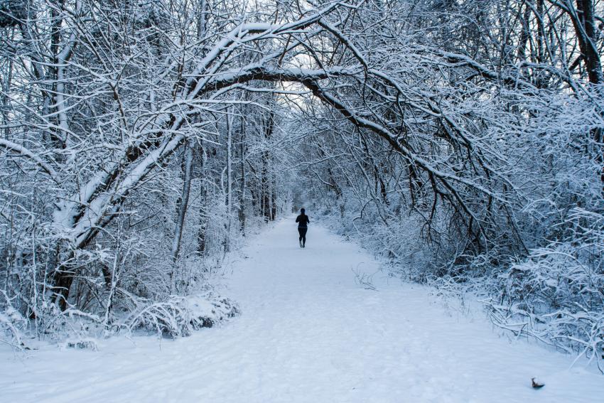 Snowy Rail Trail