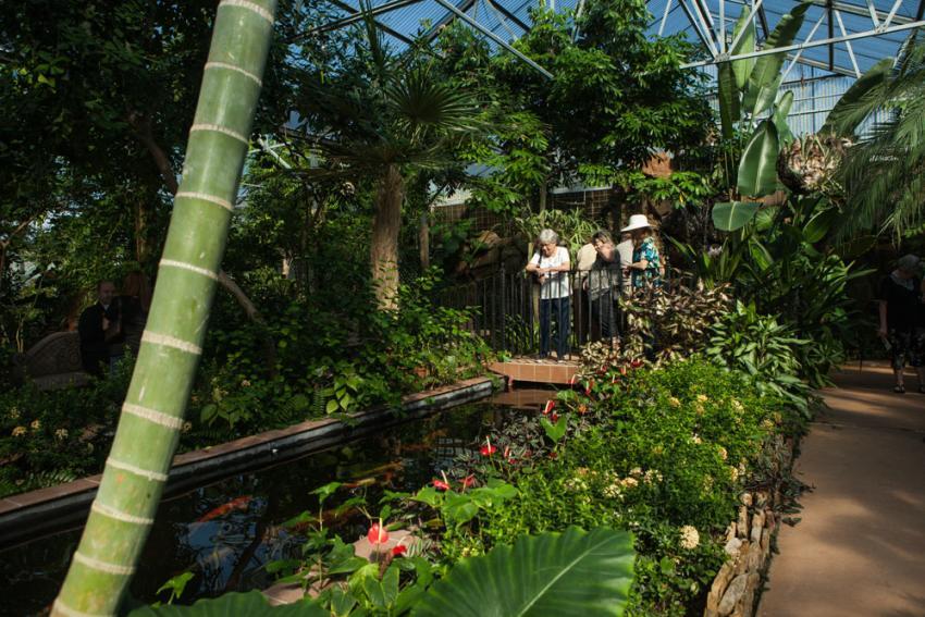 Beaumont Botanical Gardens